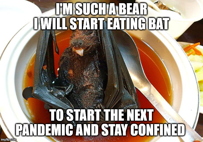 For the bears out there |  I'M SUCH A BEAR I WILL START EATING BAT; TO START THE NEXT PANDEMIC AND STAY CONFINED | image tagged in fun,funny memes,covid,pandemic,people,funny | made w/ Imgflip meme maker