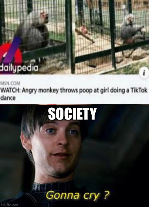 Ah yes a Meme |  SOCIETY | image tagged in memes | made w/ Imgflip meme maker