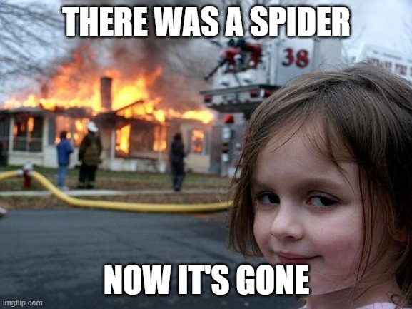Disaster Girl Meme |  THERE WAS A SPIDER; NOW IT'S GONE | image tagged in memes,disaster girl | made w/ Imgflip meme maker