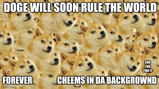 Multi Doge Meme |  DOGE WILL SOON RULE THE WORLD; CAN YOU FIND IT; FOREVER                CHEEMS IN DA BACKGROWND | image tagged in memes,multi doge | made w/ Imgflip meme maker