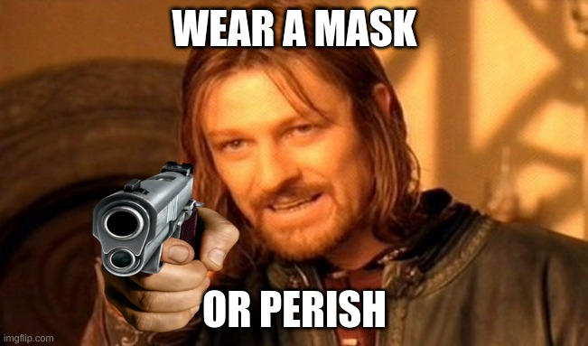 me when i find a karen |  WEAR A MASK; OR PERISH | image tagged in memes,one does not simply | made w/ Imgflip meme maker