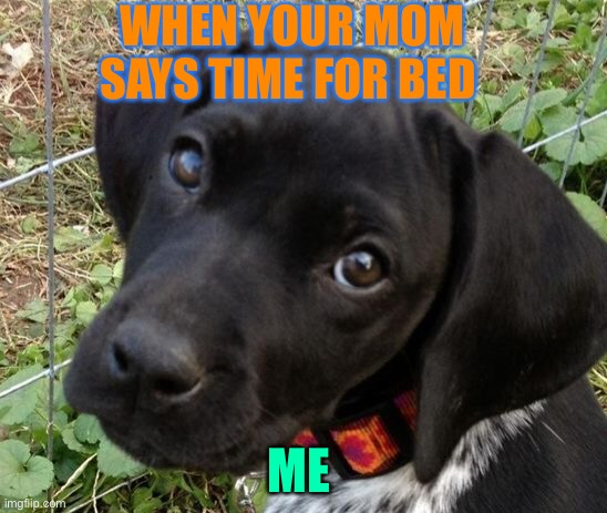 Bed time |  WHEN YOUR MOM SAYS TIME FOR BED; ME | image tagged in memes | made w/ Imgflip meme maker