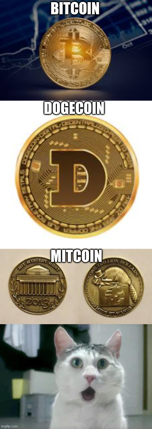 mitcoin |  BITCOIN; DOGECOIN; MITCOIN | image tagged in memes,omg cat | made w/ Imgflip meme maker