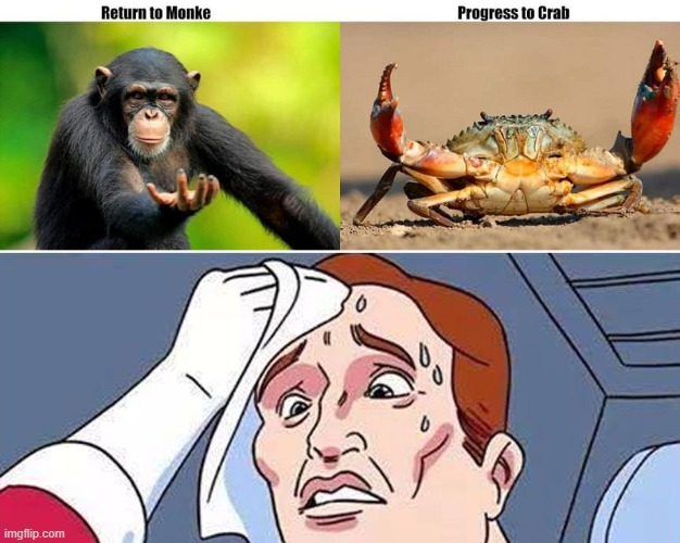 return-to-monke-progress-to-crab | image tagged in monkey,monke,return,crab,progress,dilemma | made w/ Imgflip meme maker