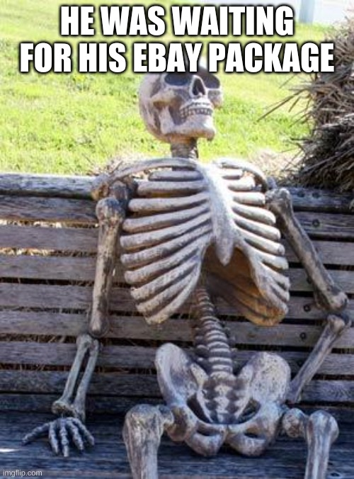 LOL |  HE WAS WAITING FOR HIS EBAY PACKAGE | image tagged in memes,waiting skeleton | made w/ Imgflip meme maker