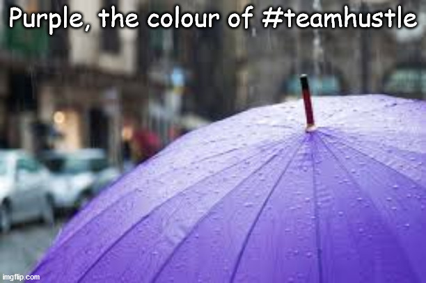 Purple, our favourite Colour |  Purple, the colour of #teamhustle | image tagged in hustle,purple | made w/ Imgflip meme maker