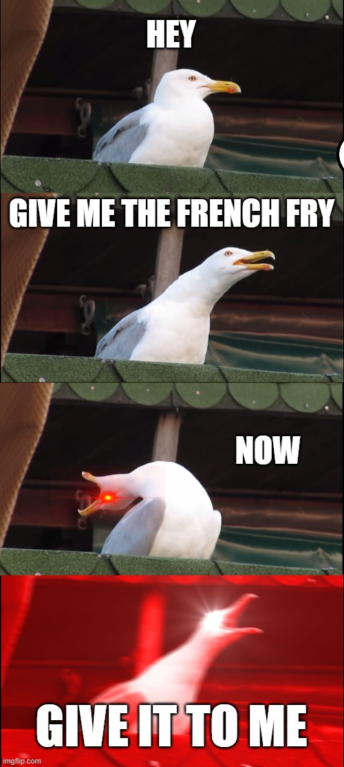 Inhaling Seagull Meme |  HEY; GIVE ME THE FRENCH FRY; NOW; GIVE IT TO ME | image tagged in memes,inhaling seagull | made w/ Imgflip meme maker