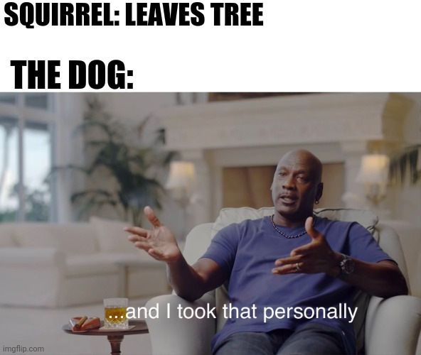 And he took that personally. |  SQUIRREL: LEAVES TREE; THE DOG: | image tagged in and i took that personally,just for fun,im sorry for this one | made w/ Imgflip meme maker