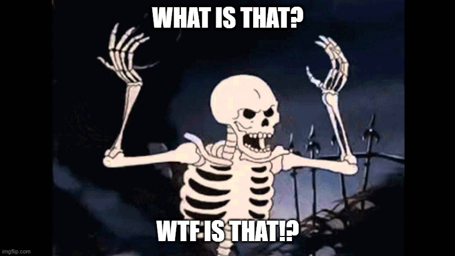 Spooky Skeleton |  WHAT IS THAT? WTF IS THAT!? | image tagged in spooky skeleton | made w/ Imgflip meme maker