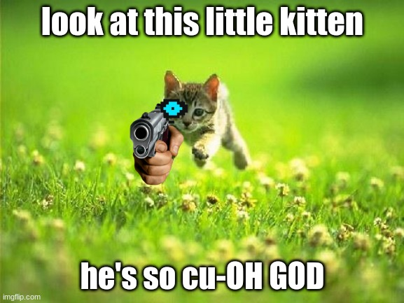 kat with gun |  look at this little kitten; he's so cu-OH GOD | image tagged in cat,funny | made w/ Imgflip meme maker