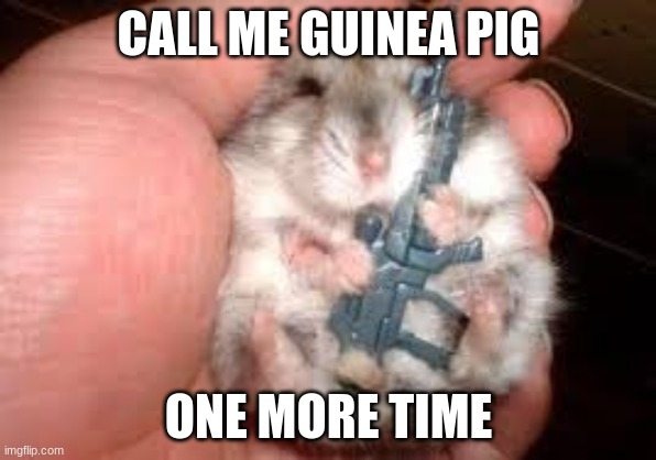 Gangster hamster |  CALL ME GUINEA PIG; ONE MORE TIME | image tagged in hamster | made w/ Imgflip meme maker