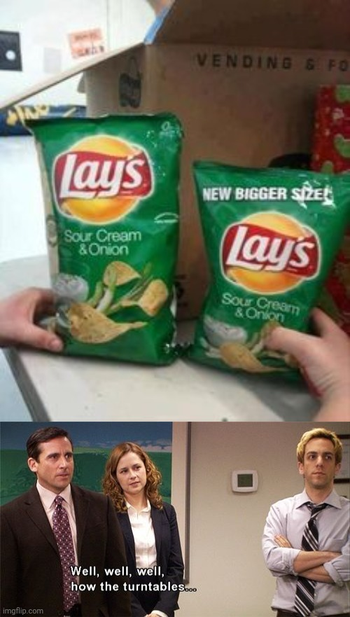 Lay's Sour Cream & Onion chips | image tagged in how the turntables,lays chips,lays,memes,potato chips,you had one job | made w/ Imgflip meme maker