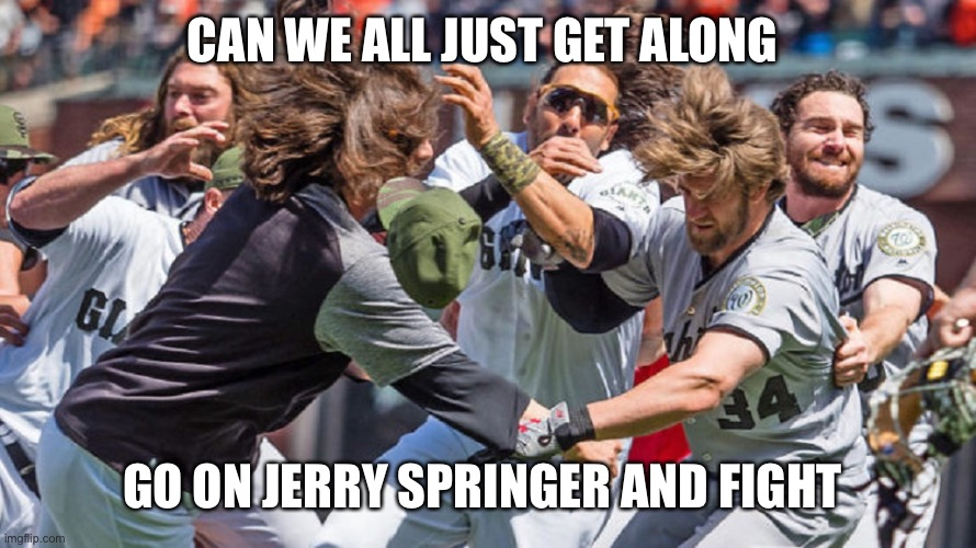 CAN WE ALL JUST GET ALONG; GO ON JERRY SPRINGER AND FIGHT | image tagged in mlb fight | made w/ Imgflip meme maker