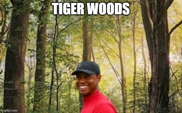 Tiger Woods |  TIGER WOODS | image tagged in memes | made w/ Imgflip meme maker