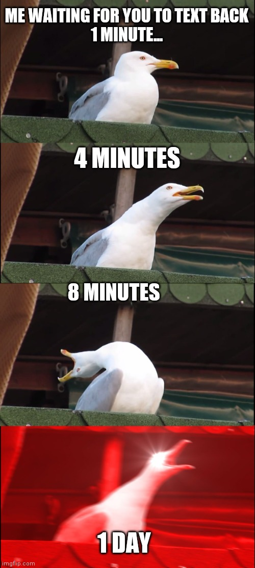 Inhaling Seagull Meme |  ME WAITING FOR YOU TO TEXT BACK 1 MINUTE... 4 MINUTES; 8 MINUTES; 1 DAY | image tagged in memes,inhaling seagull | made w/ Imgflip meme maker