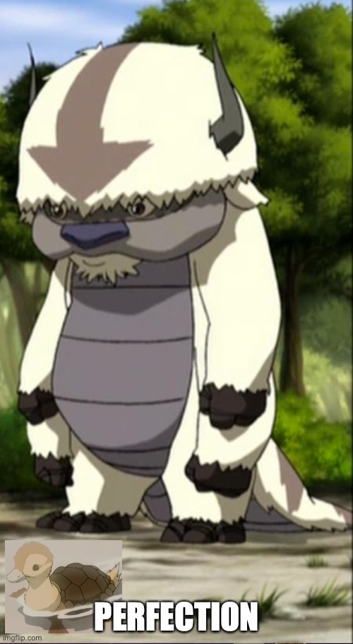 Appa | PERFECTION | image tagged in appa | made w/ Imgflip meme maker