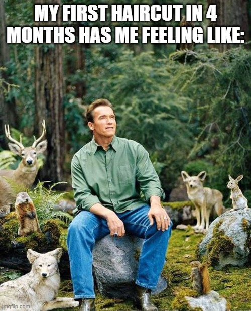 Arnold nature |  MY FIRST HAIRCUT IN 4 MONTHS HAS ME FEELING LIKE: | image tagged in arnold nature | made w/ Imgflip meme maker