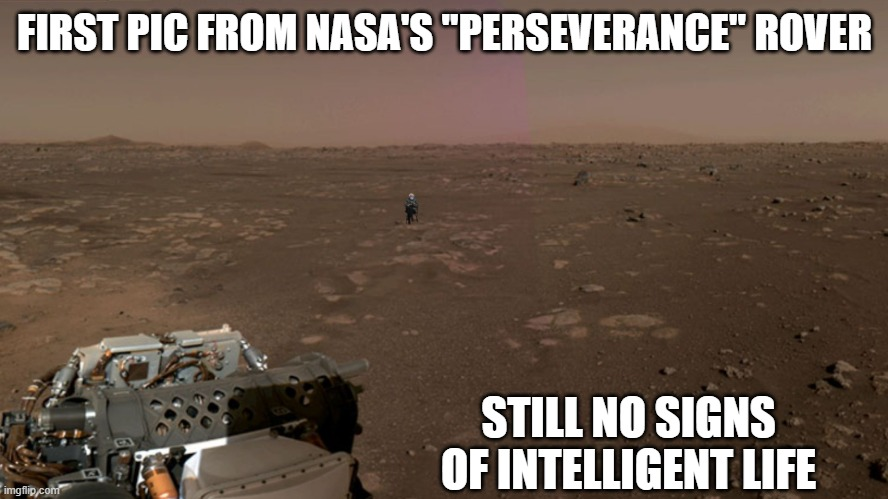 "Bernie the Martian |  FIRST PIC FROM NASA'S ""PERSEVERANCE"" ROVER; STILL NO SIGNS OF INTELLIGENT LIFE 