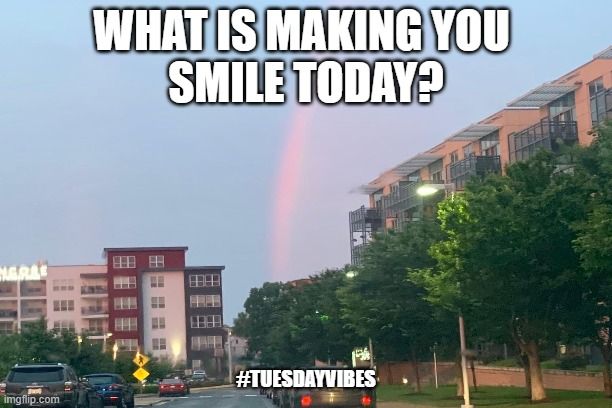 Share The Good Vibes |  WHAT IS MAKING YOU  SMILE TODAY? #TUESDAYVIBES | image tagged in sharing,good,stuff,judi,diamond | made w/ Imgflip meme maker