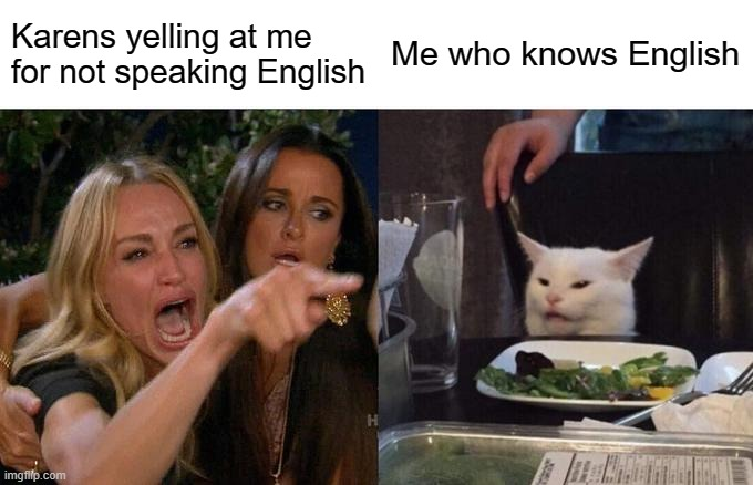 Woman Yelling At Cat Meme |  Karens yelling at me for not speaking English; Me who knows English | image tagged in memes,woman yelling at cat | made w/ Imgflip meme maker