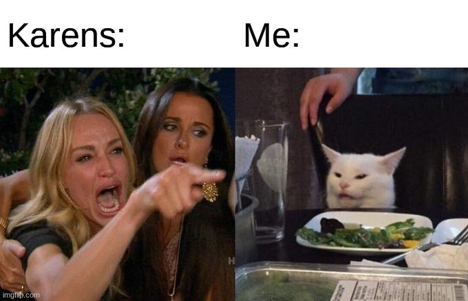 Meme |  Karens:; Me: | image tagged in karens,memes,relatable,woman yelling at cat,cat,funny | made w/ Imgflip meme maker