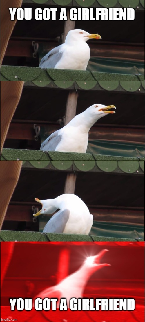 Click see more |  YOU GOT A GIRLFRIEND; YOU GOT A GIRLFRIEND | image tagged in memes,inhaling seagull | made w/ Imgflip meme maker