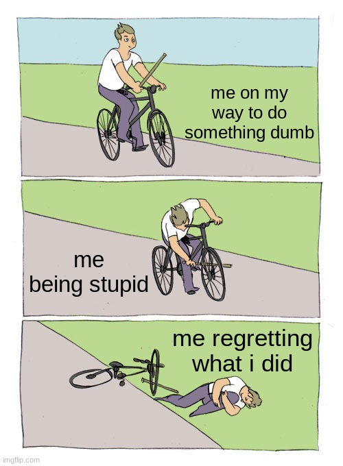 Bike Fall |  me on my way to do something dumb; me being stupid; me regretting what i did | image tagged in memes,bike fall | made w/ Imgflip meme maker