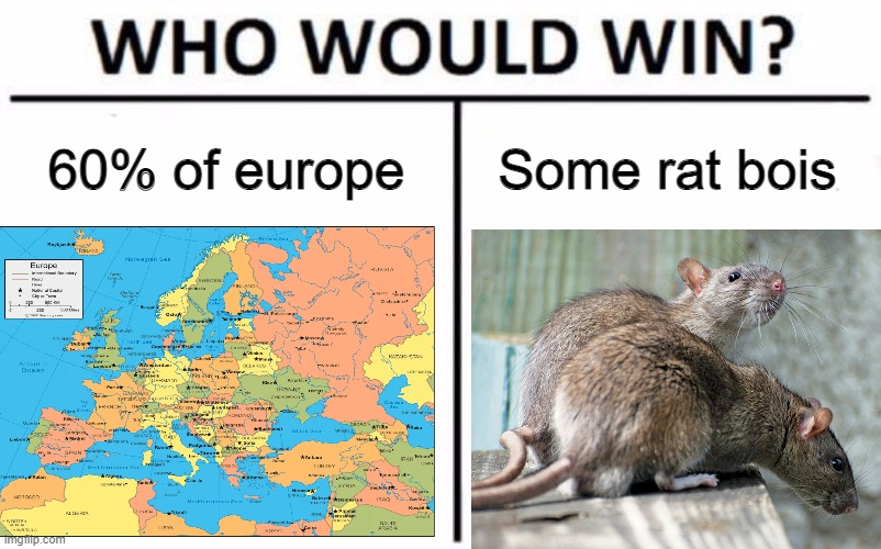 Some rats VS 60% of Europe, plus Asia, etc. |  60% of europe; Some rat bois | image tagged in plague,who would win,rats,virus,boi,history | made w/ Imgflip meme maker