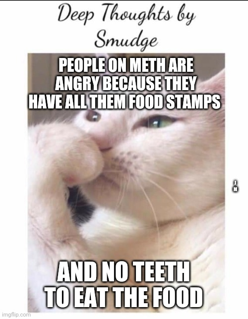 Smudge |  PEOPLE ON METH ARE ANGRY BECAUSE THEY HAVE ALL THEM FOOD STAMPS; J M; AND NO TEETH TO EAT THE FOOD | image tagged in smudge | made w/ Imgflip meme maker