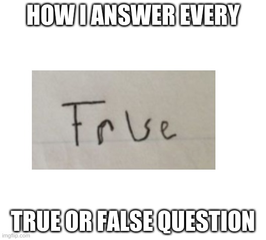 True or False |  HOW I ANSWER EVERY; TRUE OR FALSE QUESTION | image tagged in memes | made w/ Imgflip meme maker