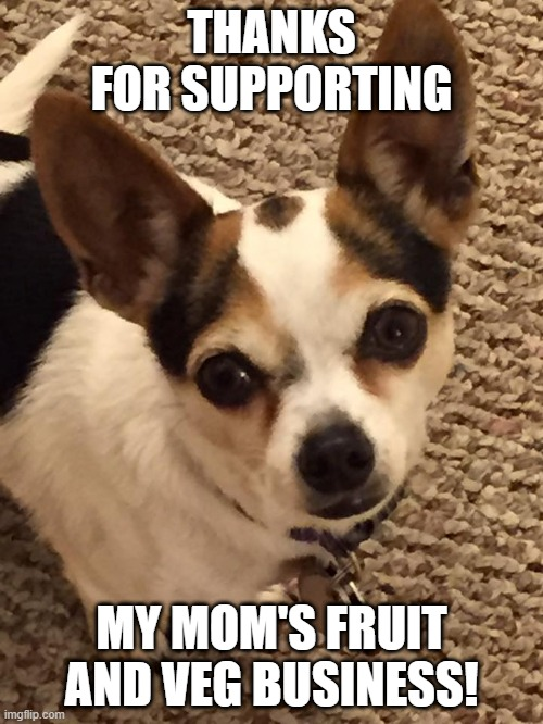 Rocky and JP |  THANKS FOR SUPPORTING; MY MOM'S FRUIT AND VEG BUSINESS! | image tagged in health,eating healthy | made w/ Imgflip meme maker
