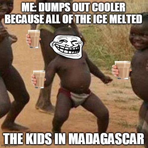 Third World Success Kid Meme |  ME: DUMPS OUT COOLER BECAUSE ALL OF THE ICE MELTED; THE KIDS IN MADAGASCAR | image tagged in memes,third world success kid | made w/ Imgflip meme maker