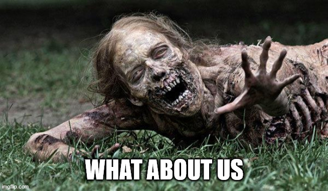 Walking Dead Zombie | WHAT ABOUT US | image tagged in walking dead zombie | made w/ Imgflip meme maker