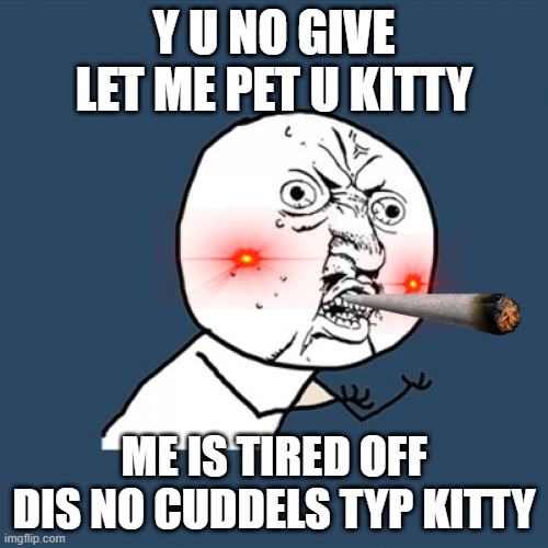 Y U No |  Y U NO GIVE LET ME PET U KITTY; ME IS TIRED OFF DIS NO CUDDELS TYP KITTY | image tagged in memes,y u no,cats | made w/ Imgflip meme maker