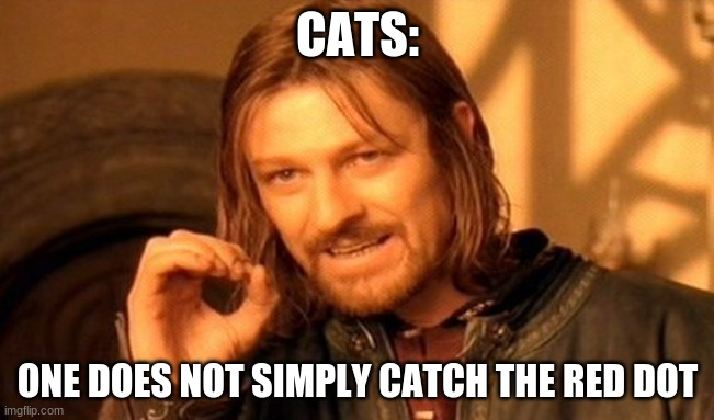 One Does Not Simply Meme |  CATS:; ONE DOES NOT SIMPLY CATCH THE RED DOT | image tagged in memes,one does not simply,cats | made w/ Imgflip meme maker