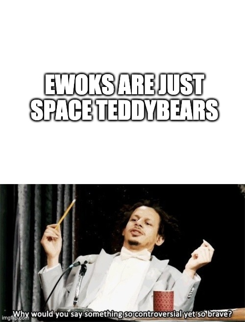EWOKS ARE JUST SPACE TEDDYBEARS | image tagged in blank white template,why would you say something so controversial yet so brave | made w/ Imgflip meme maker