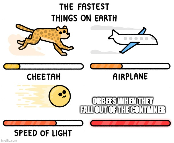 Fastest thing on earth |  ORBEES WHEN THEY FALL OUT OF THE CONTAINER | image tagged in fastest thing on earth | made w/ Imgflip meme maker