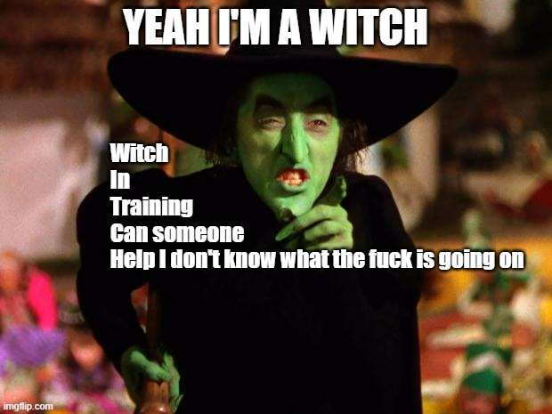 wicked witch  |  Witch In  Training Can someone Help I don't know what the fuck is going on; YEAH I'M A WITCH | image tagged in wicked witch | made w/ Imgflip meme maker