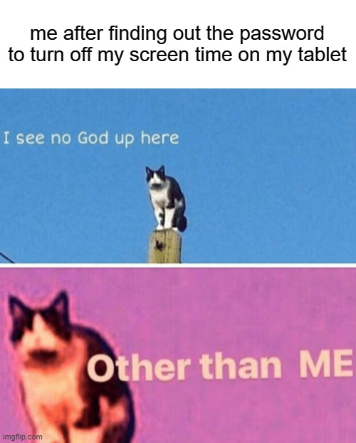 i literally feel so fucking powerful for no reason |  me after finding out the password to turn off my screen time on my tablet | image tagged in hail pole cat | made w/ Imgflip meme maker