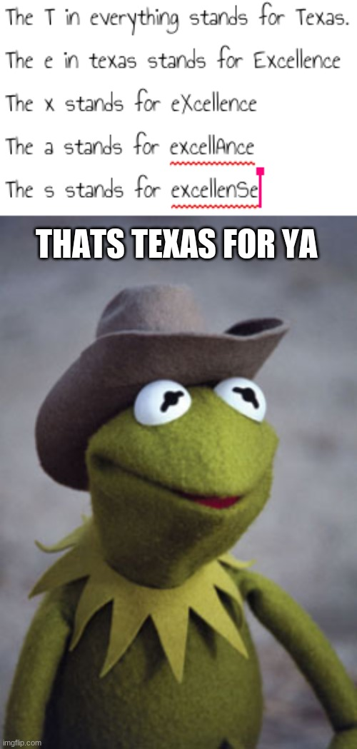 if you live in Texas. you know. |  THATS TEXAS FOR YA | image tagged in texas kermit | made w/ Imgflip meme maker