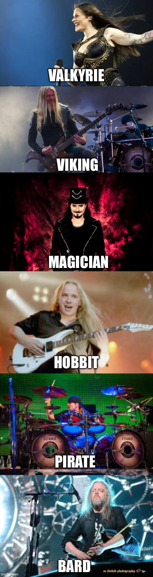 Is this an RPG character selection? No, it's Nightwish |  VALKYRIE; VIKING; MAGICIAN; HOBBIT; PIRATE; BARD | image tagged in nightwish,memes,metal | made w/ Imgflip meme maker