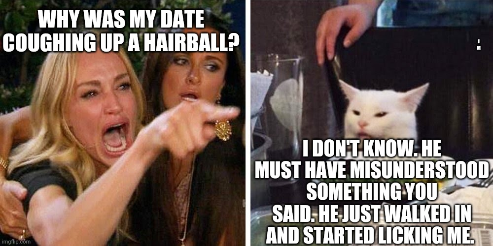 Smudge the cat |  WHY WAS MY DATE COUGHING UP A HAIRBALL? J M; I DON'T KNOW. HE MUST HAVE MISUNDERSTOOD SOMETHING YOU SAID. HE JUST WALKED IN AND STARTED LICKING ME. | image tagged in smudge the cat | made w/ Imgflip meme maker