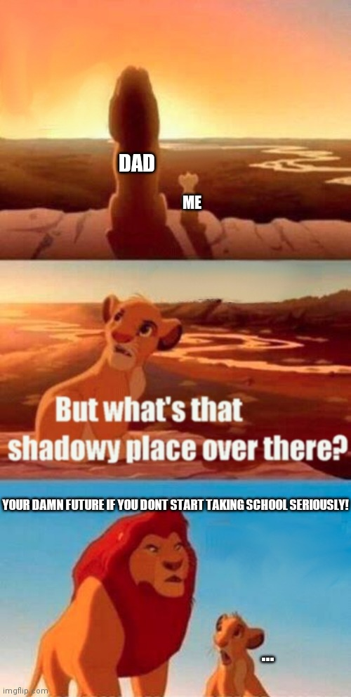Simba Shadowy Place Meme |  DAD; ME; YOUR DAMN FUTURE IF YOU DONT START TAKING SCHOOL SERIOUSLY! ... | image tagged in memes,simba shadowy place | made w/ Imgflip meme maker