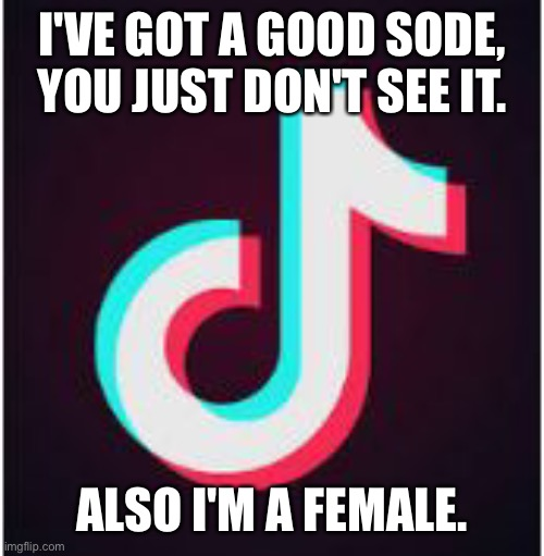 She's got a good side. |  I'VE GOT A GOOD SODE, YOU JUST DON'T SEE IT. ALSO I'M A FEMALE. | image tagged in she's,got,a,good,side,oh wow are you actually reading these tags | made w/ Imgflip meme maker