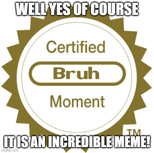 Certified bruh moment | WELL YES OF COURSE IT IS AN INCREDIBLE MEME! | image tagged in certified bruh moment | made w/ Imgflip meme maker