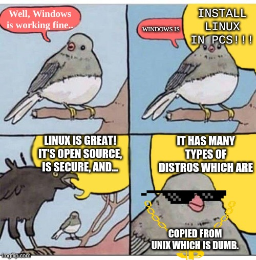 How to stop Linuxers from blabbering |  INSTALL LINUX IN PCS!!! Well, Windows is working fine.. WINDOWS IS; LINUX IS GREAT! IT'S OPEN SOURCE, IS SECURE, AND... IT HAS MANY TYPES OF DISTROS WHICH ARE; COPIED FROM UNIX WHICH IS DUMB. | image tagged in annoyed bird,windows 10,linux | made w/ Imgflip meme maker