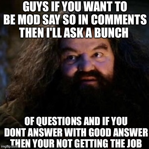 Mod tryout |  GUYS IF YOU WANT TO BE MOD SAY SO IN COMMENTS THEN I'LL ASK A BUNCH; OF QUESTIONS AND IF YOU DONT ANSWER WITH GOOD ANSWER THEN YOUR NOT GETTING THE JOB | image tagged in you're a wizard harry | made w/ Imgflip meme maker