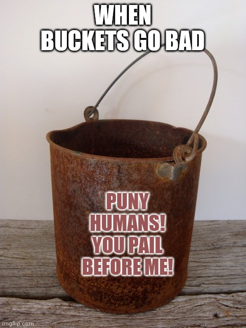 Bad buckets |  WHEN BUCKETS GO BAD; PUNY HUMANS! YOU PAIL BEFORE ME! | image tagged in rust bucket,funny meme,bad jokes | made w/ Imgflip meme maker