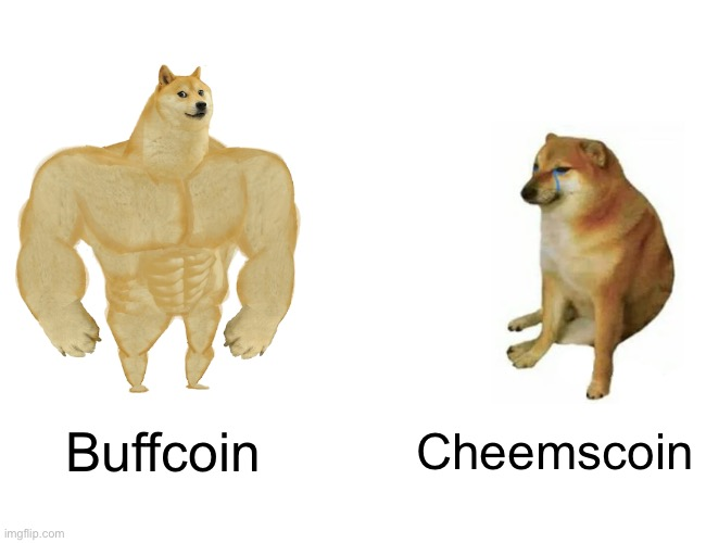 Buff Doge vs. Cheems Meme | Buffcoin Cheemscoin | image tagged in memes,buff doge vs cheems | made w/ Imgflip meme maker