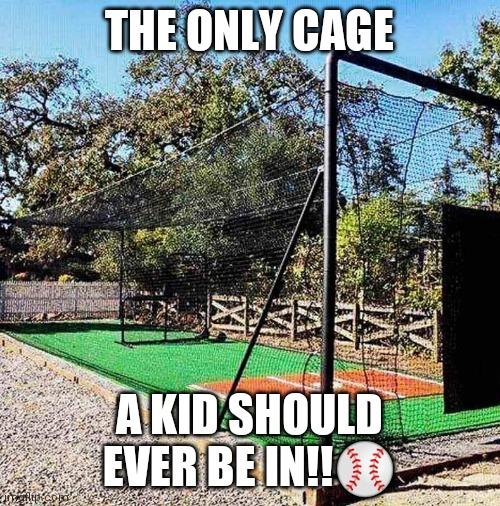 THE ONLY CAGE; A KID SHOULD EVER BE IN!!⚾ | image tagged in baseball | made w/ Imgflip meme maker